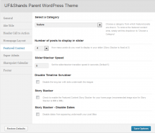 theme featured content options