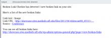 Broken Link Email Report