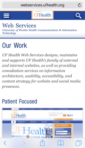 Web Services Website in Mobile View